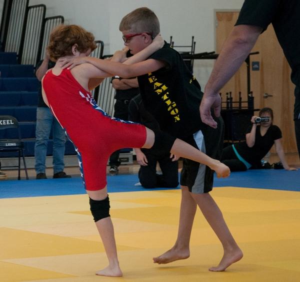 Mixed Martial Arts Games: Liberty Games 2013 Mixed Martial Arts